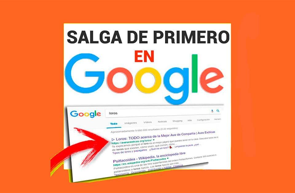 Cómo aparecer en los primeros lugares de Google ?